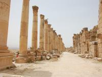 Jerash - Cardo Maximus